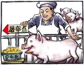 """""""人道屠宰""""啥东东?世界动物保护组织来给扫扫盲..."""